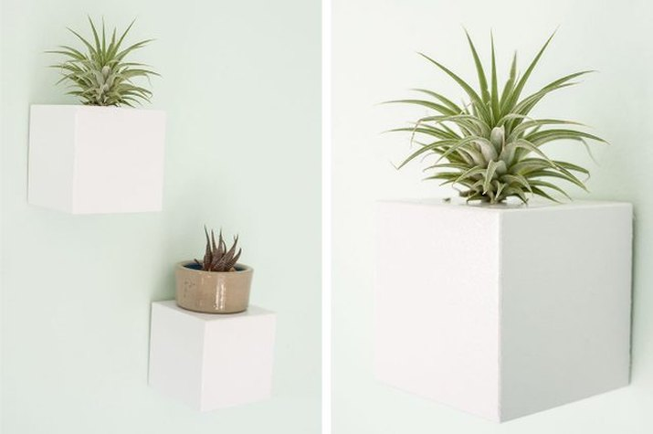 Contemporary wall hangings