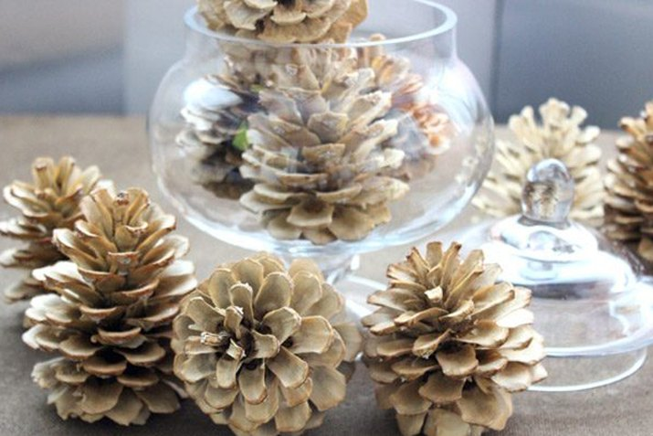 Give your backyard pine cones a winter wonderland makeover.