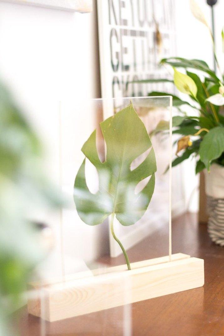 DIY Framed Leaf Home Accessory