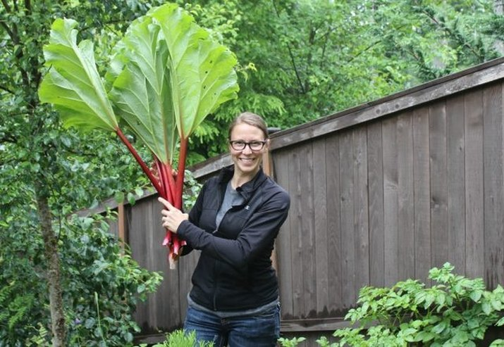 Planting perennial fruits and vegetables