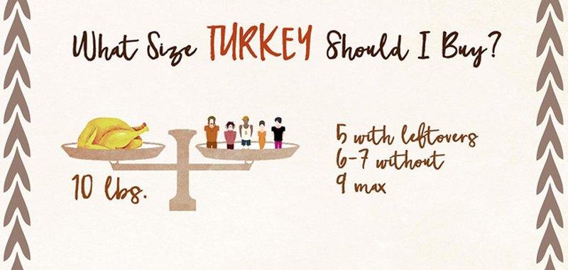 Turkey size 10 lbs