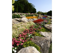Ideas for Landscaping on an Incline (with Pictures) | eHow on Inclined Backyard Ideas id=59159